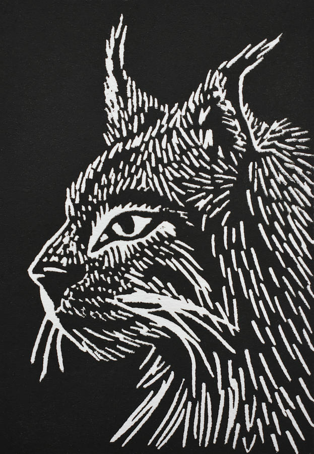 Canada Lynx Relief