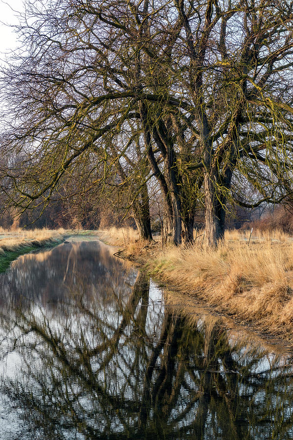 Canal Reflection by Harold Carlson