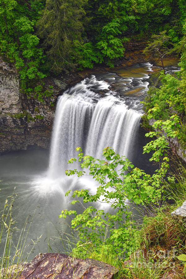 Cane Creek Falls Photograph - Cane Creek Falls 11 by Phil Perkins