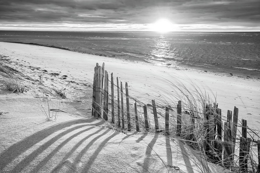 Black And White Photograph - Cape Cod Beach Fence by Dapixara Art