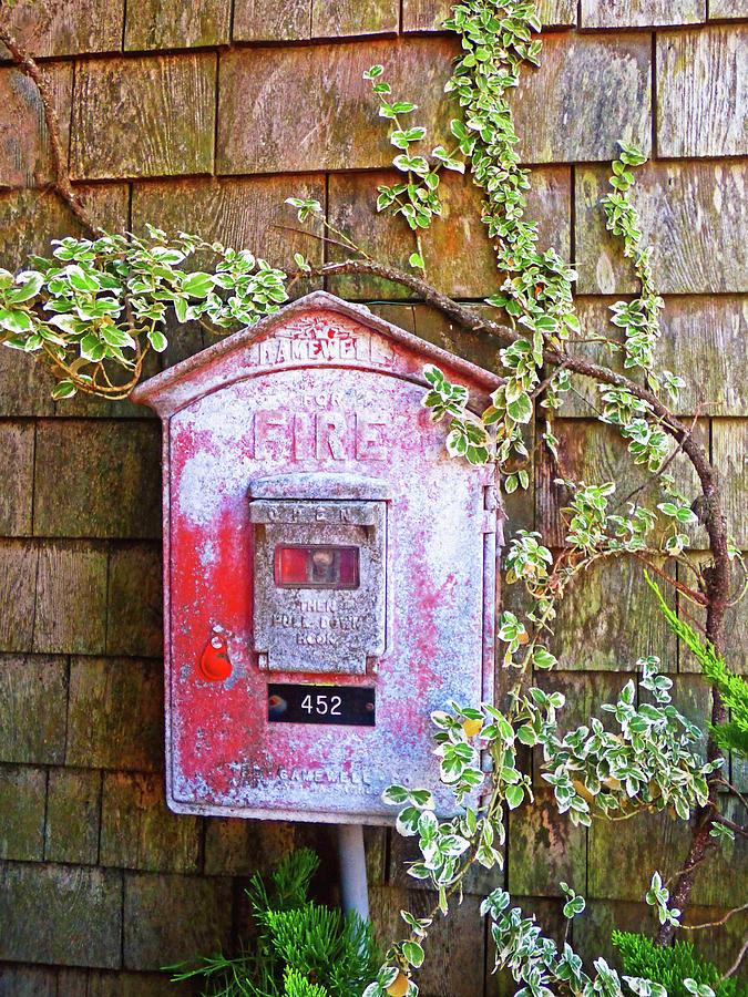 Cape Cod Fire Box 300 Photograph