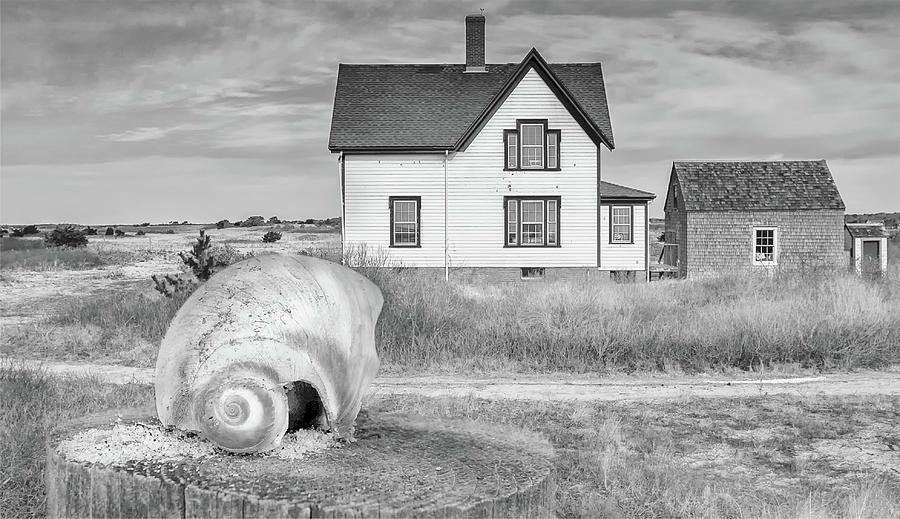 Cape Cod House Photograph - Cape Cod House Black and white photography by Dapixara Art