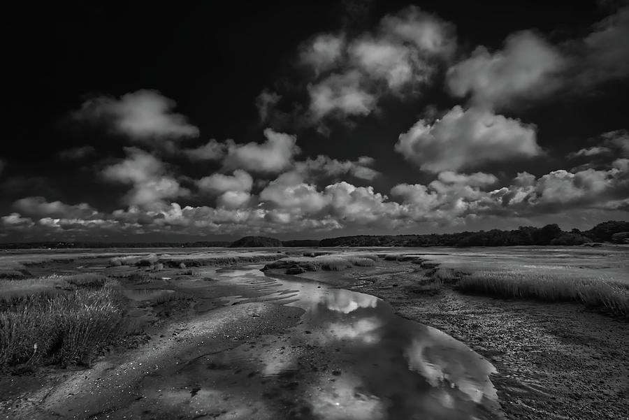 Marches Photograph - Cape Cod Marches Black and White Landscape by Dapixara Art
