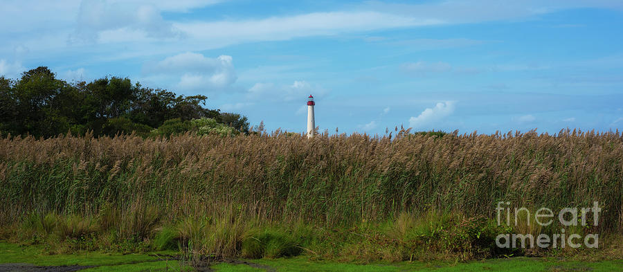 Cape May Lighthouse Panorama by Michael Ver Sprill