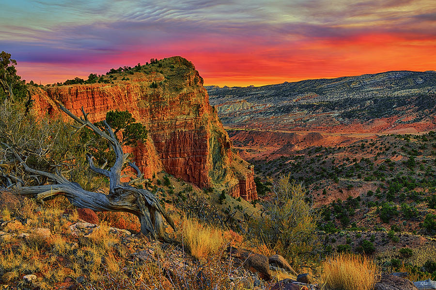 Capitol Reef South Desert Sunset by Greg Norrell