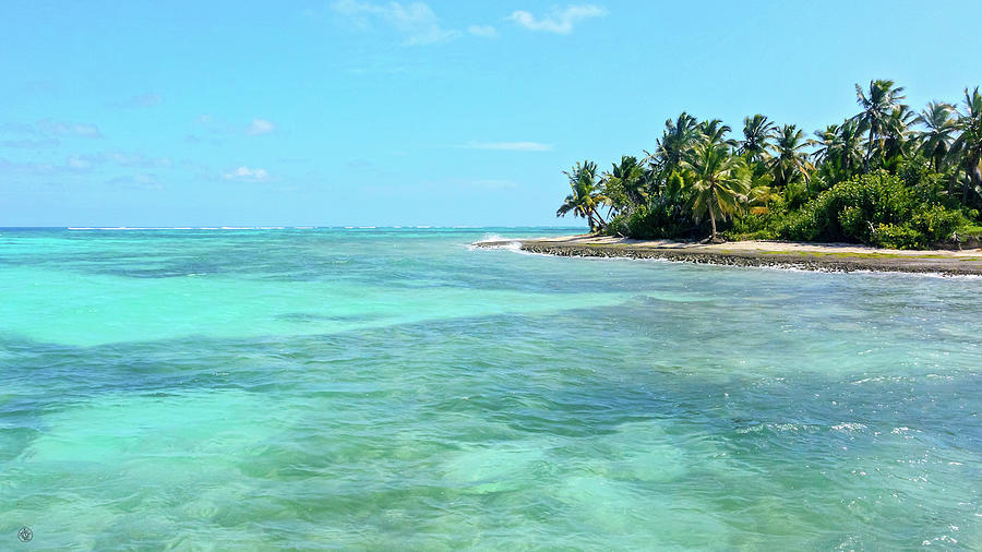 Caribbean Photograph - Caribbean Blues by Andrew Zydell