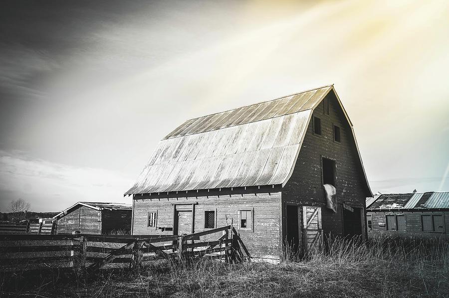 Barn Photograph - Carlson Barn 4 by Cindy Nunn