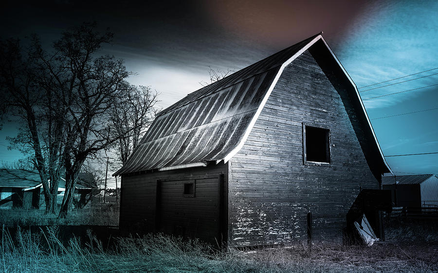 Barn Photograph - Carlson Barn 5 by Cindy Nunn