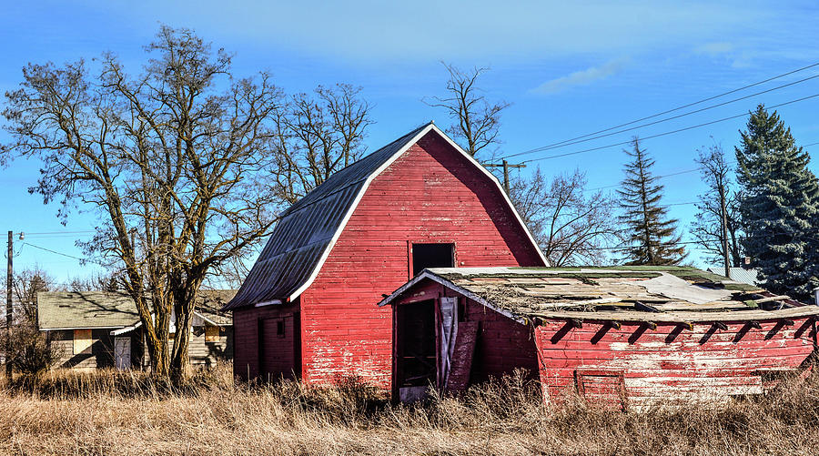 Barn Photograph - Carlson Barn 6 by Cindy Nunn