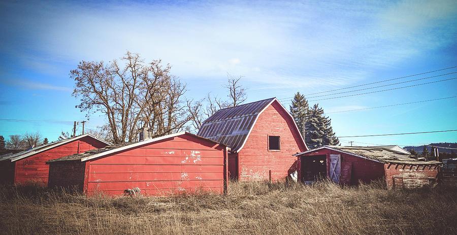 Barn Photograph - Carlson Barn 8 by Cindy Nunn