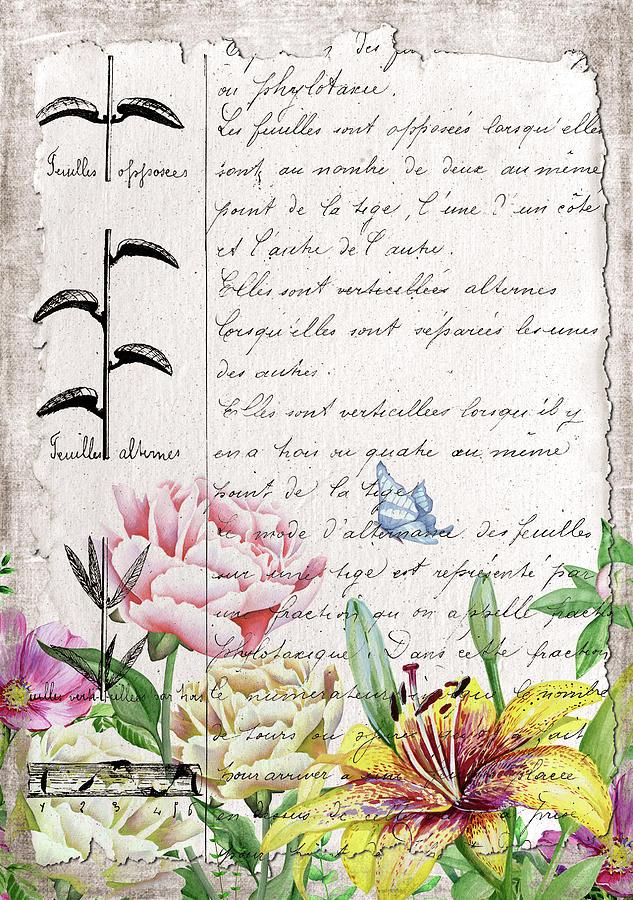French Digital Art - Carnet Botanique 4 by Pauline Black