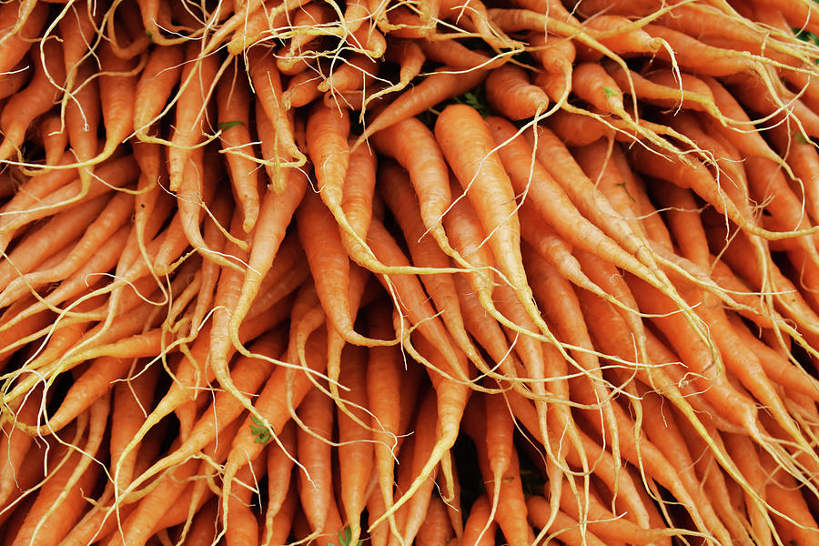Vegetables Photograph - Carrots by D Patrick Miller