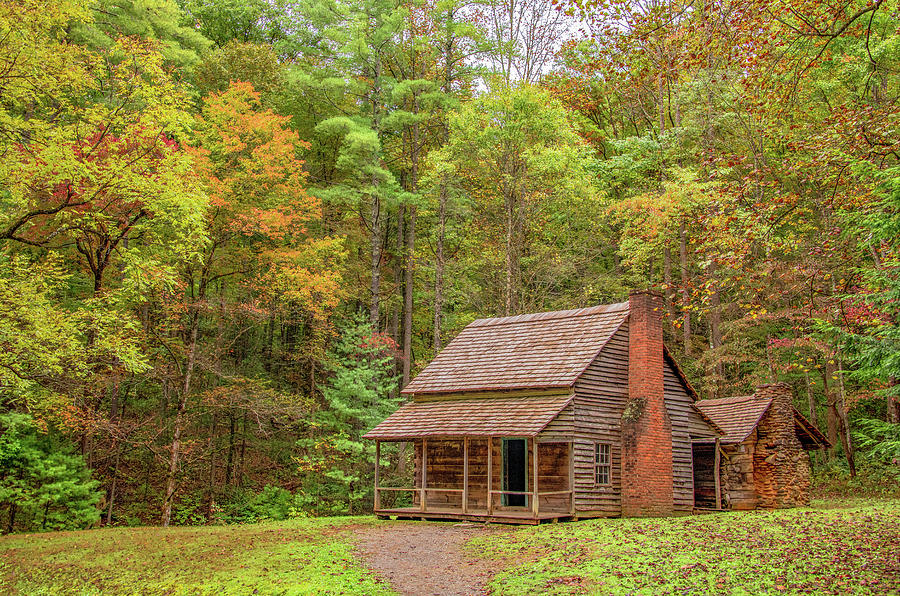 Carter Shields Cabin, First Touches of Fall by Marcy Wielfaert