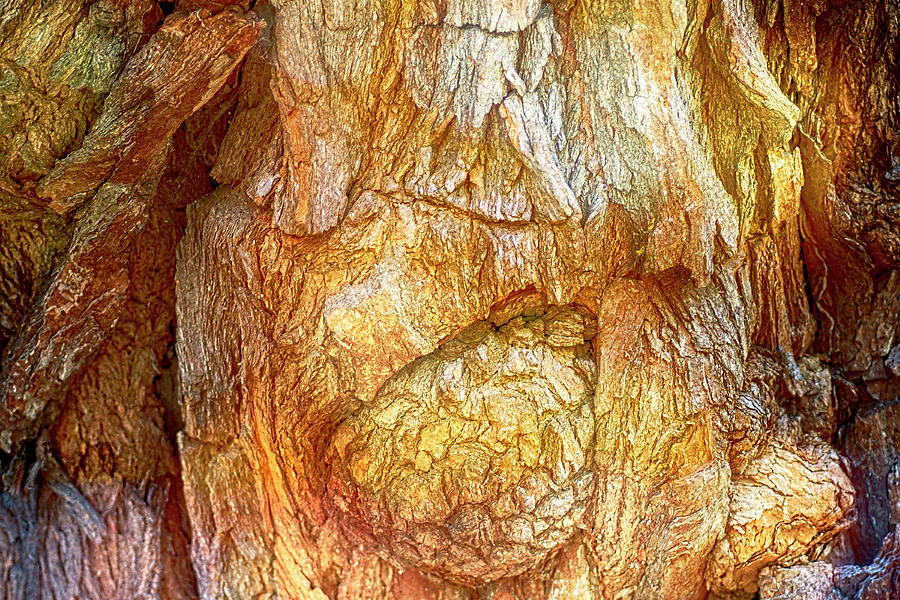 Carved By Nature Photograph