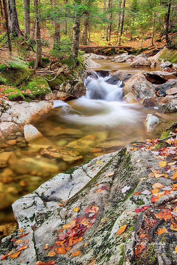 Cascade In The Pemigewasset 3551 Photograph