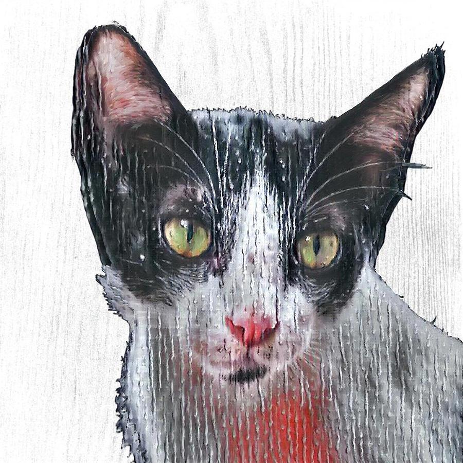 Cat Portrait On Wood Painting