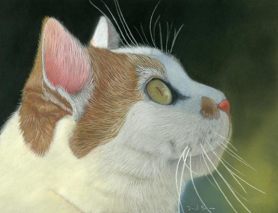 Cat Pastel - Cat Portrait Pastel Painting by Dave Nevue