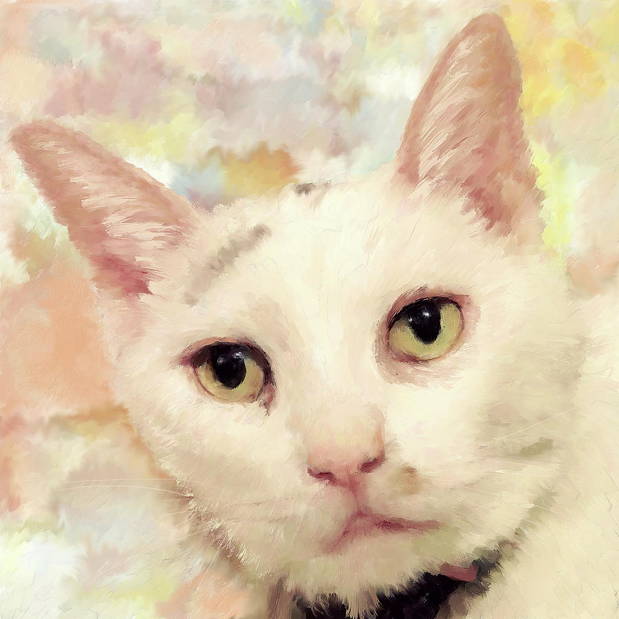 Cat  Portrait Painting