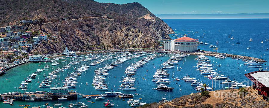 Catalina Island Avalon Panorama Photograph