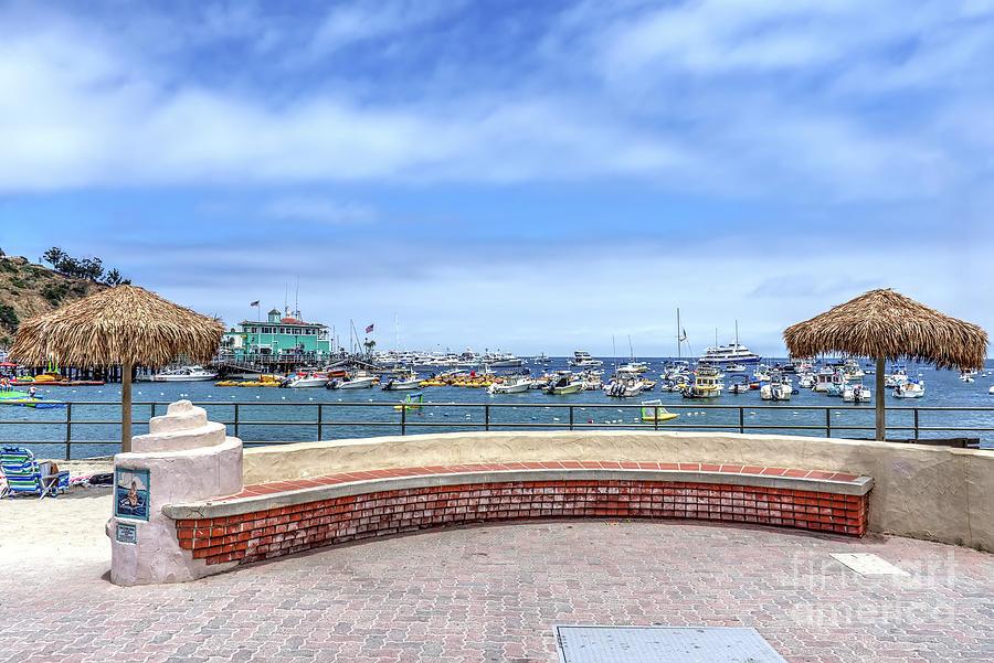 Catalina Island View by Eddie Yerkish