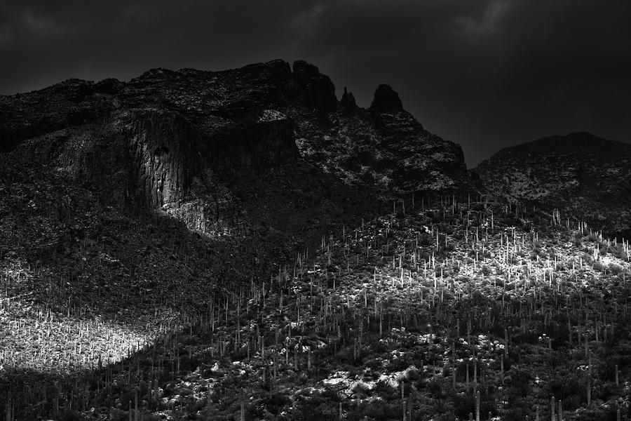Catalina Mountains Black and White by Chance Kafka