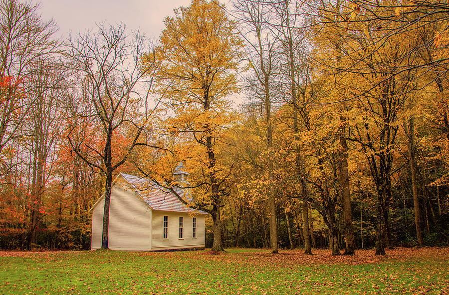 Cataloochee Autumn by Marcy Wielfaert