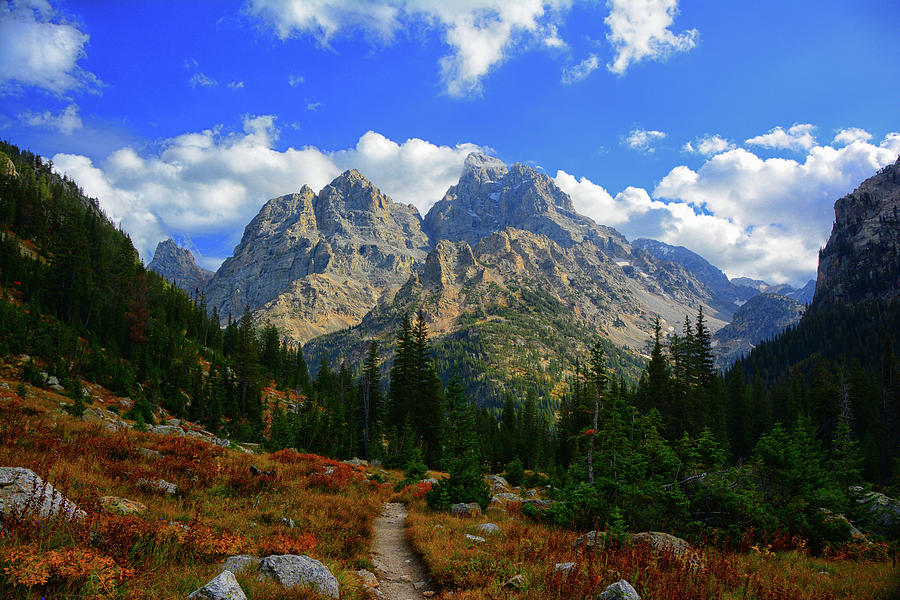 Cathedral Group from Cascade Canyon North Fork by Raymond Salani III