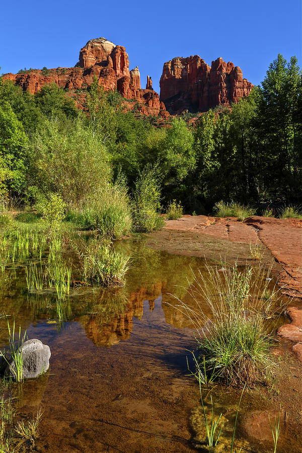 Cathedral Rock Puddle by Wes and Dotty Weber