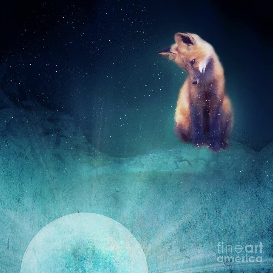 The vixen and the moon by Priska Wettstein