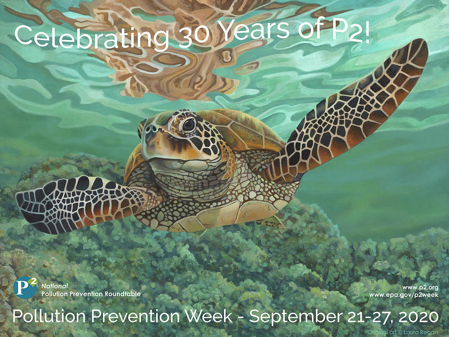 P2 Mixed Media - Celebrate P2 by Pollution Prevention Roundtable