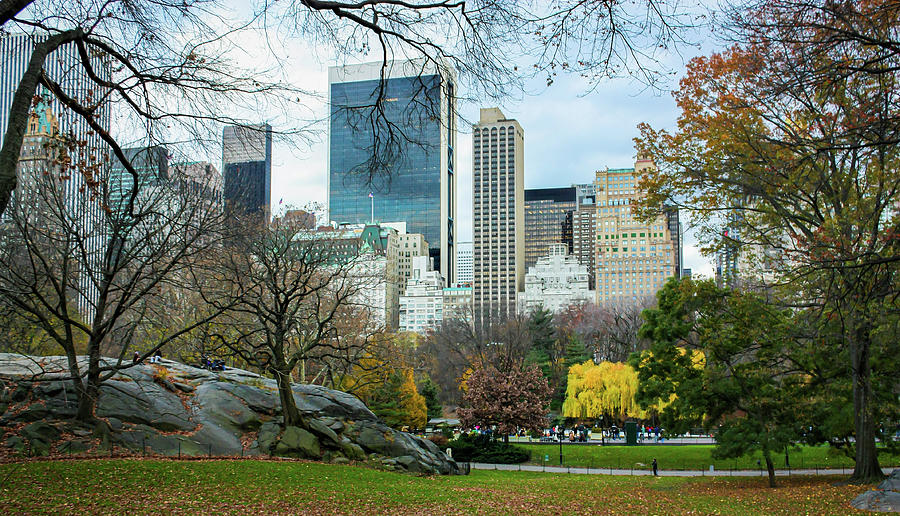 Central Park Fall Scene Photograph