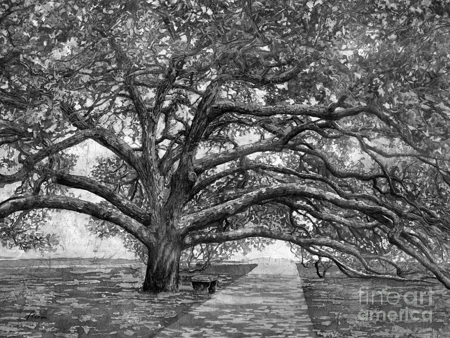 Century Tree 2 In Black And White Painting