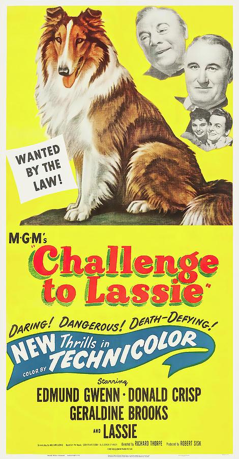 challenge To Lassie Movie Poster, 1949 Mixed Media