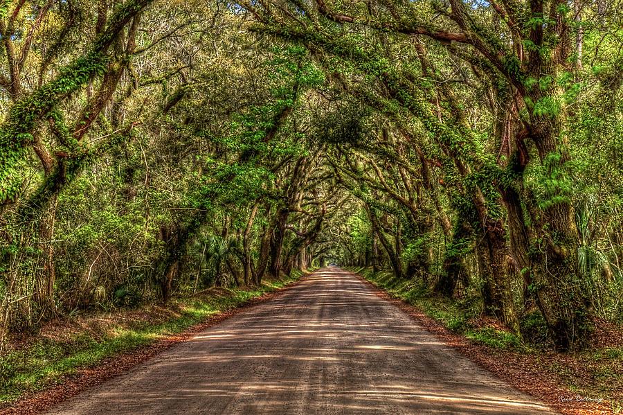 Charleston S C Deep Shadows Edisto Island Botany Bay Road South Carolina Landscape Art by Reid Callaway