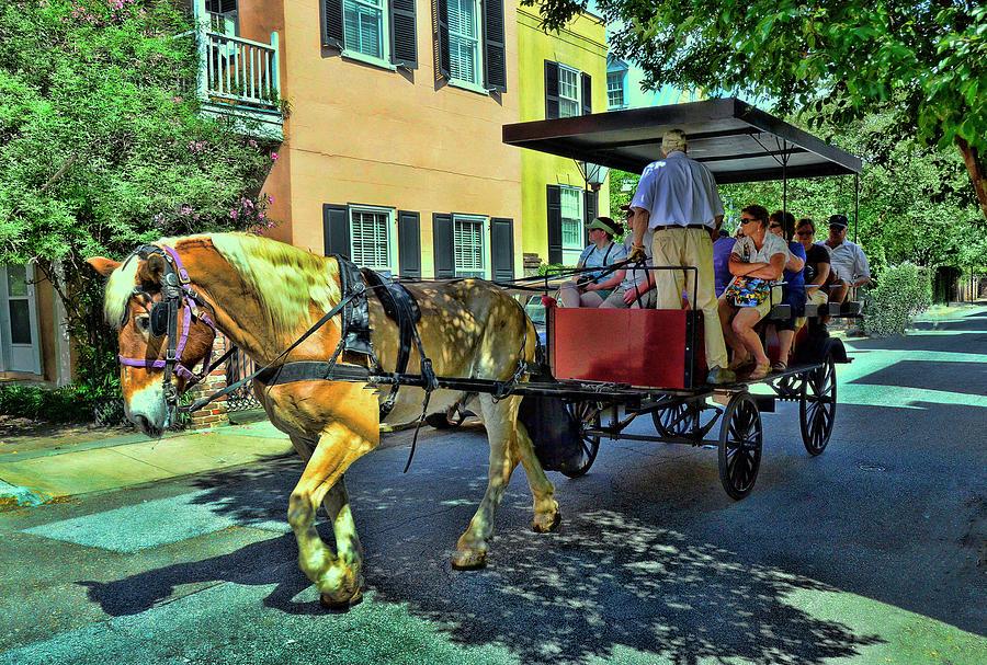 Charleston Tour Carriage Photograph