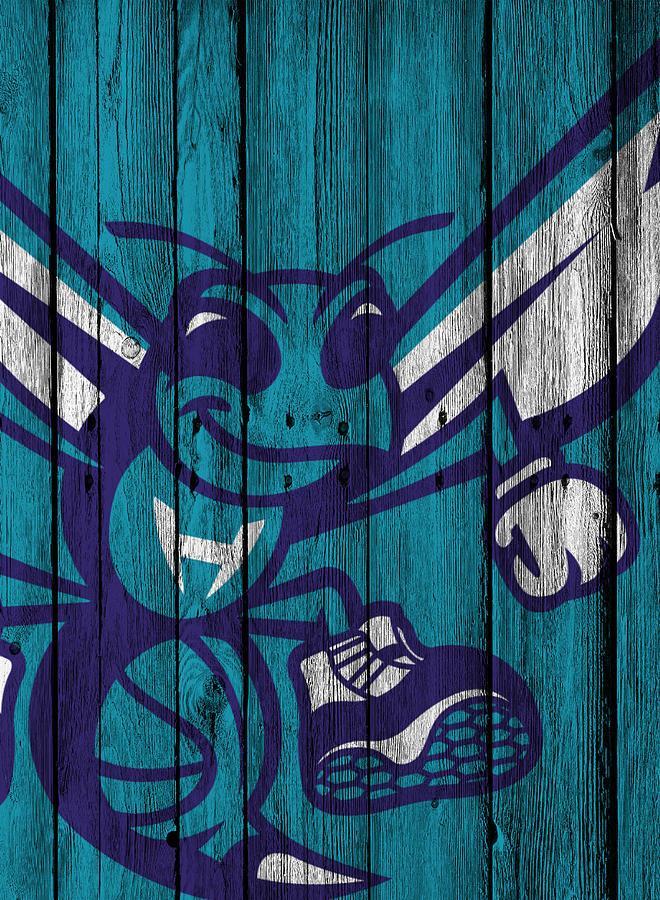 Hornets Photograph - Charlotte Hornets Wood Fence by Joe Hamilton
