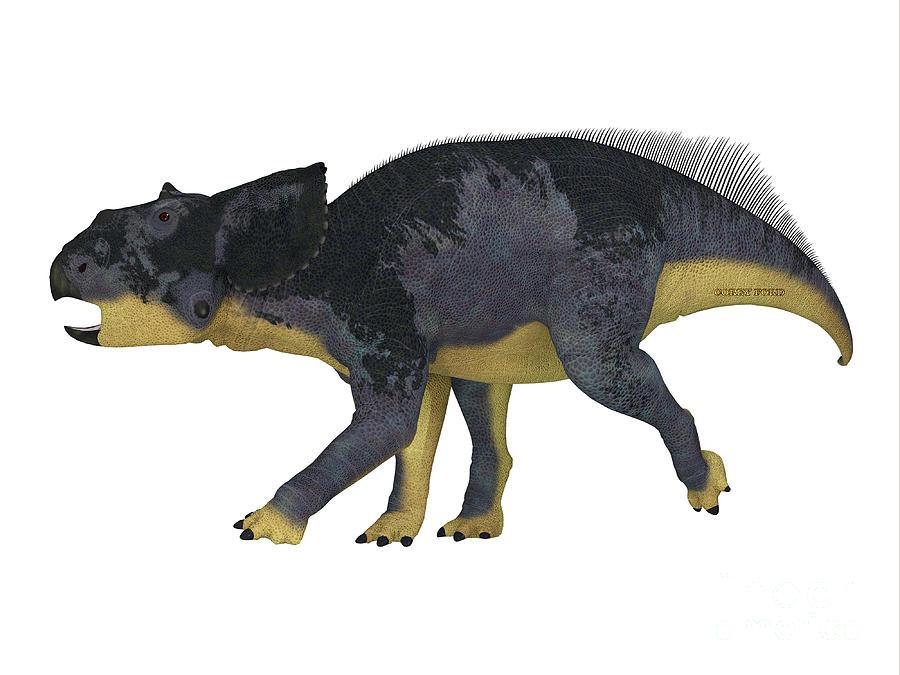 Chasmosaurus Juvenile Dinosaur Digital Art