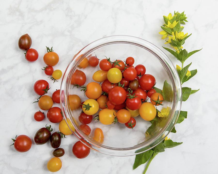 Cherry Tomatoes 3 Photograph