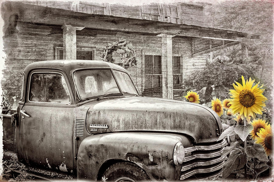 Chevy in the Garden Sepia Tones with Sunflowers by Debra and Dave Vanderlaan