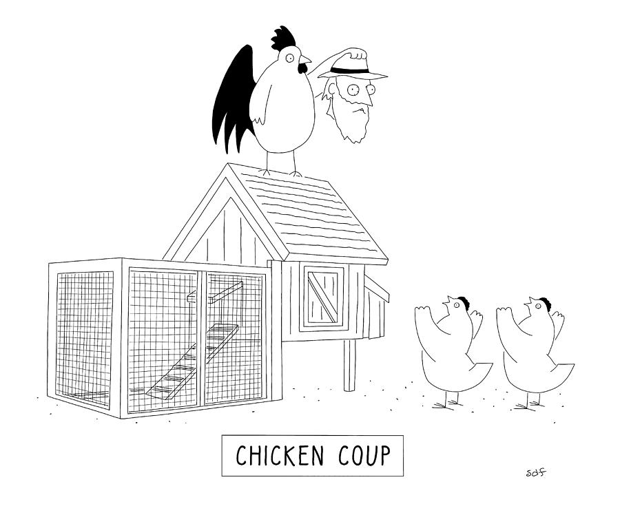 Chicken Coup Drawing by Seth Fleishman