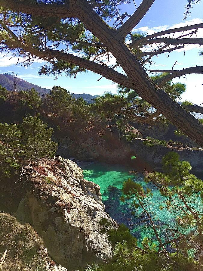 China Cove Trail Point Lobos Photograph