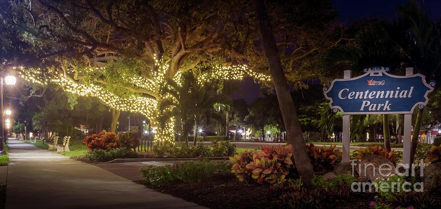 Christmas Lights at Centennial Park in Venice, Florida ...