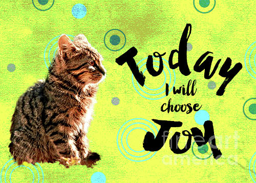 Cat Mixed Media - Choose Joy by PurrVeyor Com
