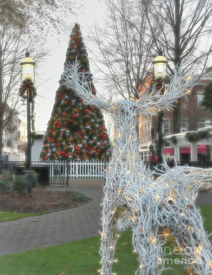 Christmas at Birkdale by Amy Dundon