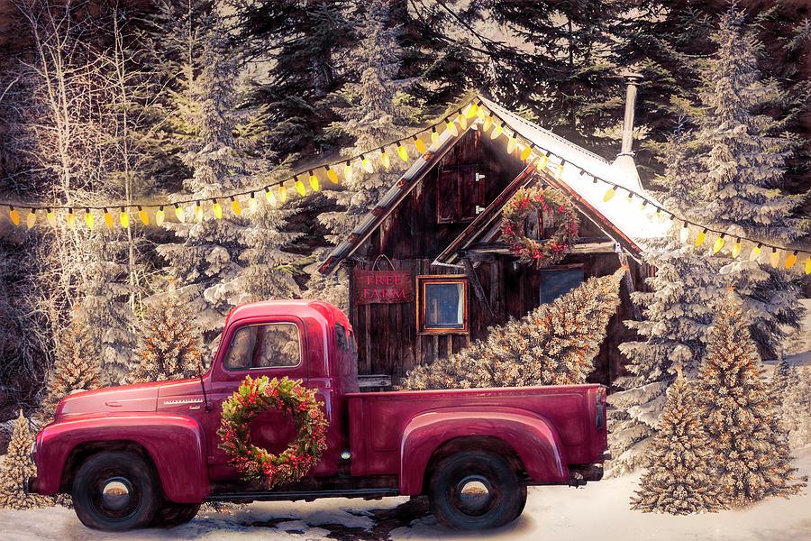 Christmas Eve Tree Farm  by Debra and Dave Vanderlaan