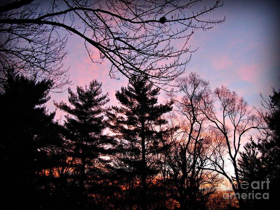Christmas Sunrise 2019 by Frank J Casella