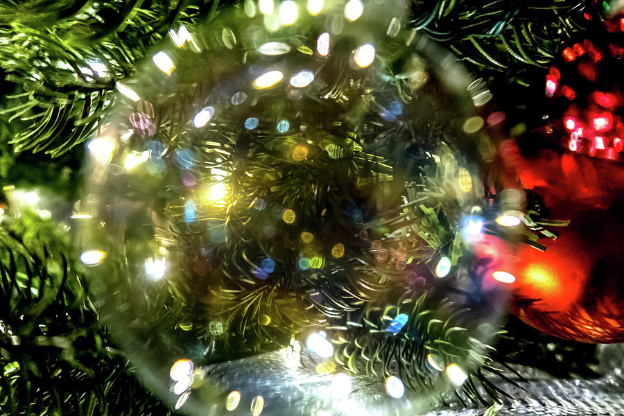 Christmas Tree Light Show by Robert Blandy Jr