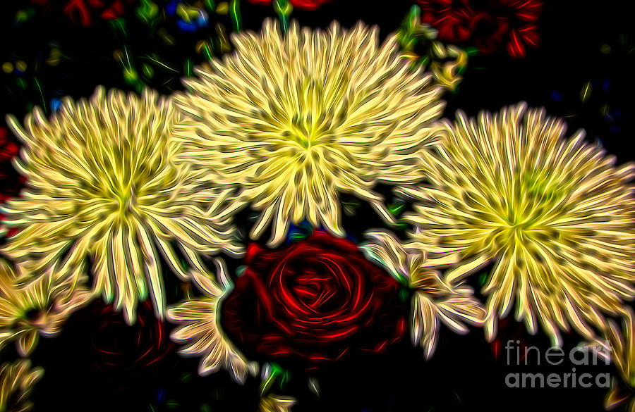 Chrysanthemums and a Red Rose with Brilliant on Black Abstract Effect by Rose Santuci-Sofranko
