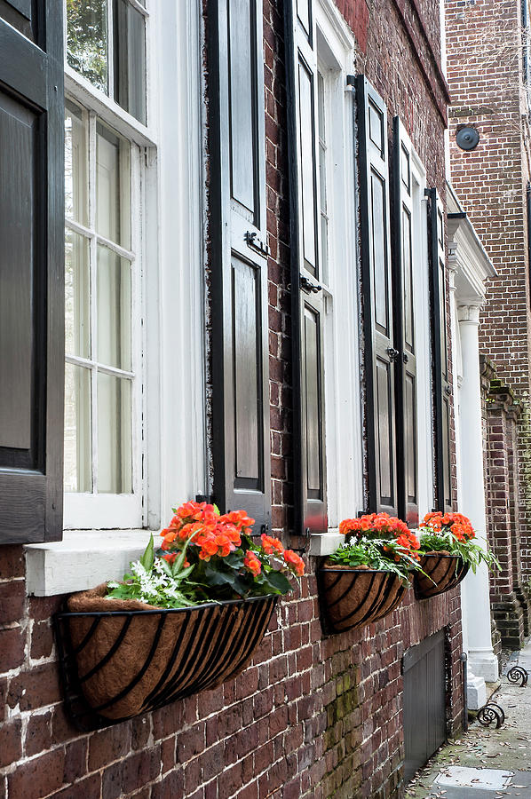 Church Street Window Boxes Photograph