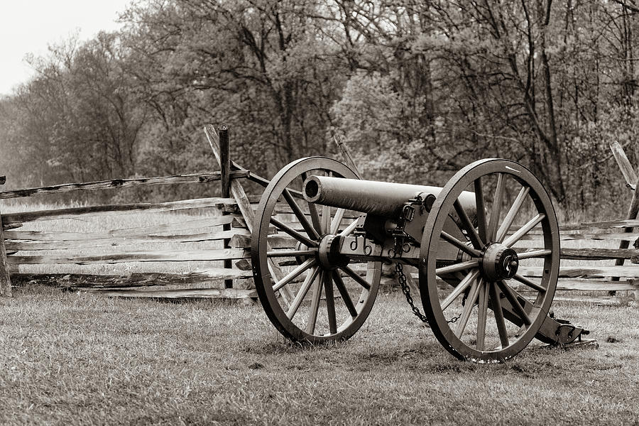 Civil War Cannon by Michael Chatt